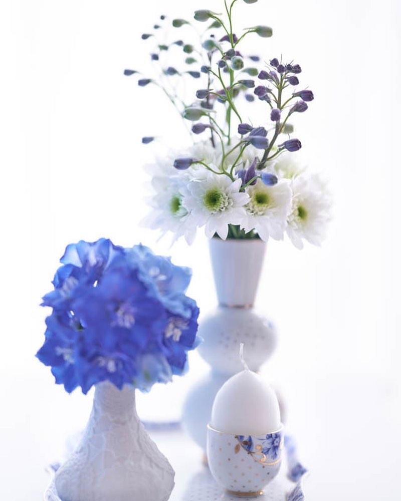 Small and fragile? Are you talking about delphinium? Yes, a delphinium can also …